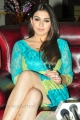 Telugu Actress Hansika Motwani Hot Spicy Photos