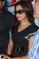 Actress Harika Payal Ghosh Photo Gallery