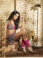 Amy Jackson Hot Photo Shoot @ G Venkatram Stars Calendar 2012