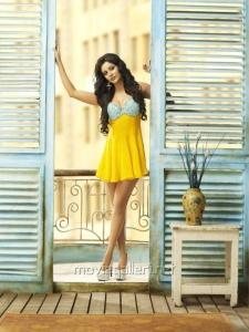 Priya Anand Hot Photo Shoot @ G Venkatram Stars Calendar 2012