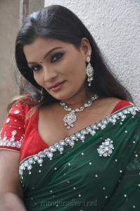 Tamil Actress Kumtaj Hot Saree Photosi