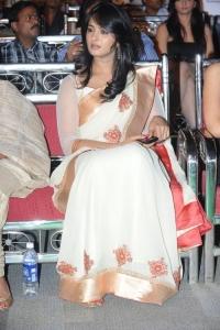 Anushka @ Lux Sandal Cinemaa Awards 2011
