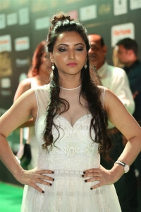 Actress Meghana Gaonkar Stills @ International Indian Film Academy Awards Utsavam 2017 Green Carpet