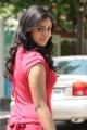 Tamil Actress Nakshatra Stills Photos Gallery