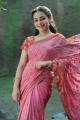 Nithya Menon Saree Photos in Ishq Movie
