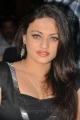 Actress Sneha Ullal Photos @ TSR Crescent Cricket Cup 2013 Curtain Raiser