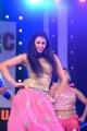 Actress Kamna Jethmalani Photos @ TSR Crescent Cricket Cup 2013 Curtain Raiser