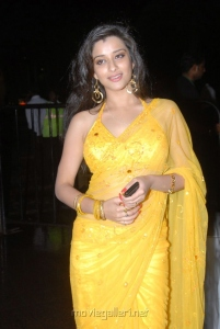 Madhurima Hot Saree Pics @ Santosham Film Awards 2011