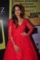 Actress Parul Yadav @ South Scope Lifestyle Awards 2016 Red Carpet Stills