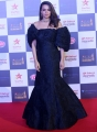 Actress Surveen Chawla @ Star Screen Awards 2019 Red Carpet Stills