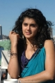 Tapsee Latest Cute Hot Photos in Mr Perfect