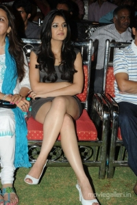 100% Love Movie Actress Thasha Hot Spicy Photo Gallery