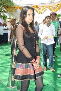 Actress Trisha Latest Pictures, Tamil Actress Trisha Latest Pics