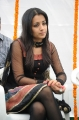 Actress Trisha Latest Pictures, Tamil Actress Trisha Latest Pics