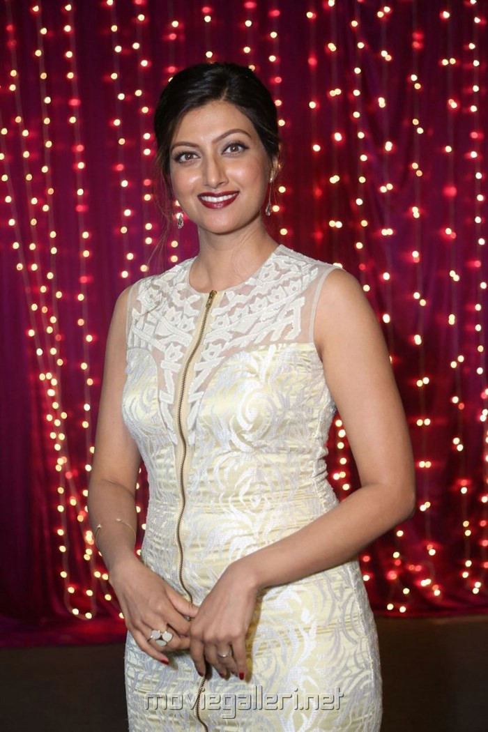 Hamsa Nandini @ Zee Telugu Apsara Awards 2017 Red Carpet Stills