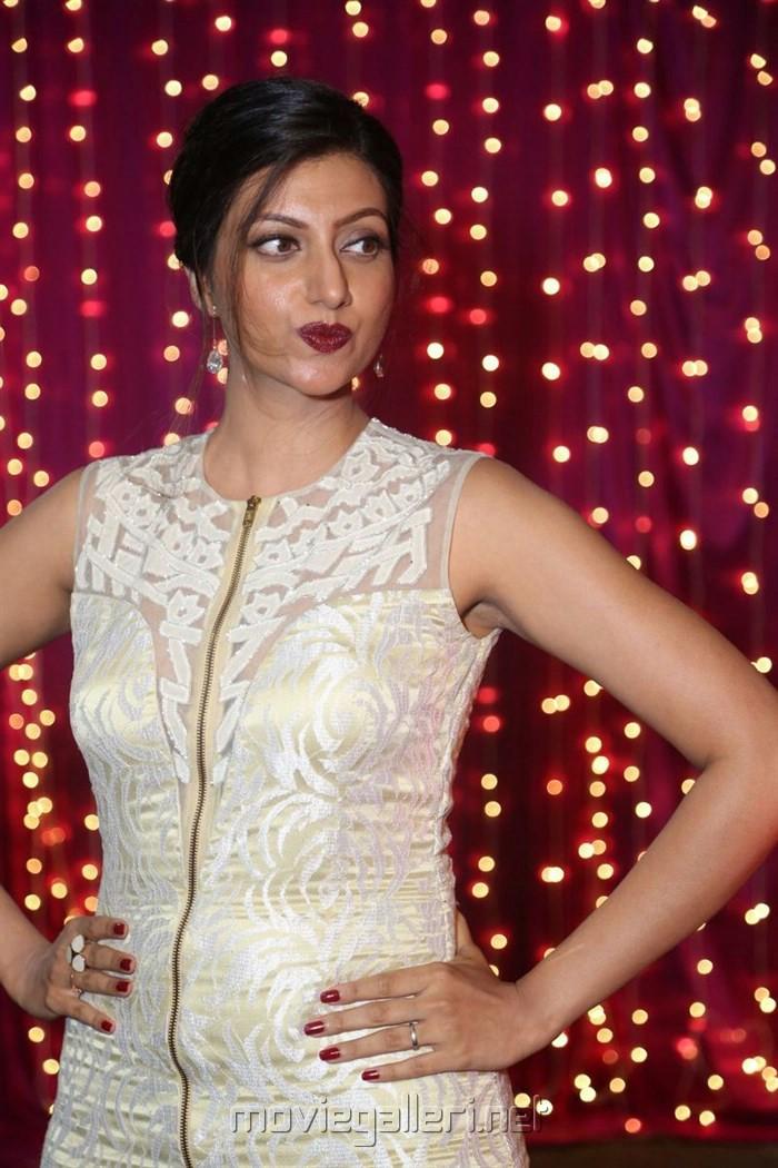 Hamsa Nandini @ Zee Telugu Apsara Awards 2017 Red Carpet Stills