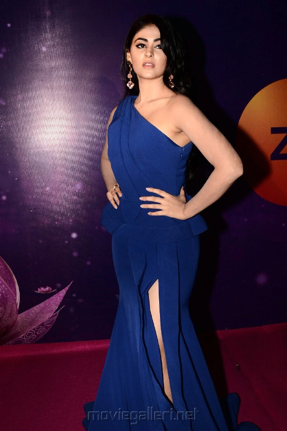 Actress Palak Lalwani @ Zee Telugu Apsara Awards 2018 Red Carpet Photos