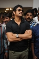 Nagarjuna Akkineni @ Adda Movie Platinum Disk Function Stills