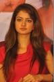 Actress Shanvi @ Adda Movie Success Meet Photos
