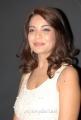Actress Adonika Hot Photos at Aravind 2 Movie Audio Launch