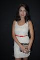 Actress Adonika Hot Photos at Aravind 2 Movie Music Launch