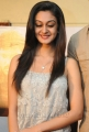 Actress Aishwarya Arjun Stills at Pattathu Yaanai Team Interview