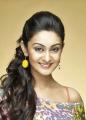 Actor Arjun's daughter Aishwarya Photos