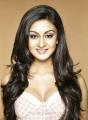 Actress Aishwarya Arjun Hot Photo Shoot Stills