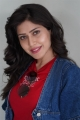 Actress Aishwarya Raj Photos @ Director Movie Trailer Launch
