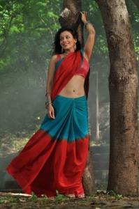 Actress Asha Saini in Akasamlo Sagam Movie Stills