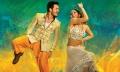 Akkineni Akhil, Sayesha Saigal in Akhil Movie Stills