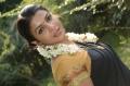 Akhil, Saranya Nag in Vaalu Tamil Movie Stills