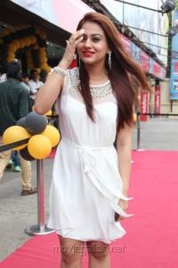 Aksha Pardasany Hot Photos @ Salim Audio Release