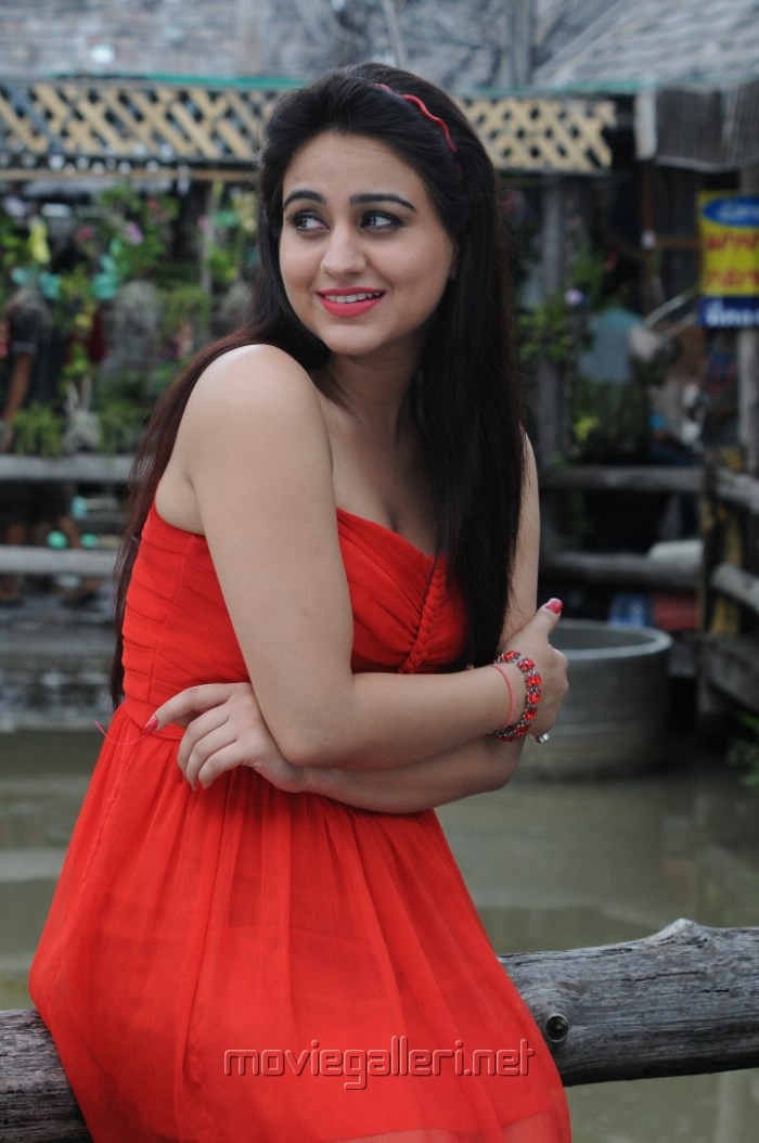 Actress Aksha Hot Stills in Red Dress from Shatruvu