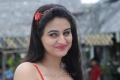 Aksha Pardasany Stills in Red Dress from Shatruvu Movie