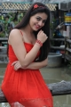Shatruvu Movie Actress Aksha Pardasany Hot Stills in Red Dress