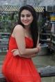 Telugu Actress Aksha Hot Stills in Red Dress from Shatruvu Movie