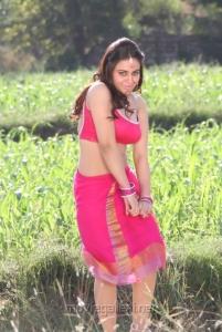 Rey Rey Movie Actress Aksha Hot Stills