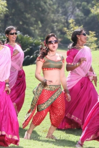 Actress Aksha Pardasany Hot Pics in Rey Rey Movie