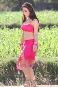 Actress Aksha Hot Pics in Rey Rey Movie