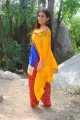 Actress Aksha Pardasany Hot Photos in Blue Churidar Dress