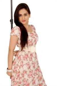 Actress Aksha Pardasany Photoshoot Stills