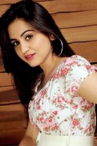 Telugu Actress Aksha Pardasany Photoshoot Stills