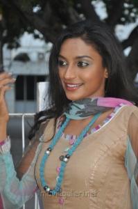 Tamil Actress Akshaya in Churidar Stills