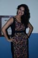 Actress @ Alandur Fine Arts Awards 2014 Photos