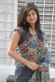 Alekhya Hot in Transparent Saree Images at Aa Aiduguru Opening
