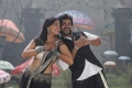 Anushka, Karthi in Alex Pandian New Photos