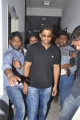 Actor Allu Arjun Birthday Celebration 2013 Photos