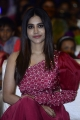 Actress Nabha Natesh @ Alludu Adhurs Movie Pre Release Event Stills