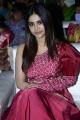 Actress Nabha Natesh @ Alludu Adhurs Movie Pre Release Event Stills